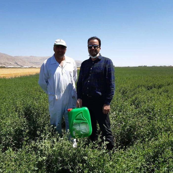 بازدید کارشناسان شرکت امکان پذیر از مزارع