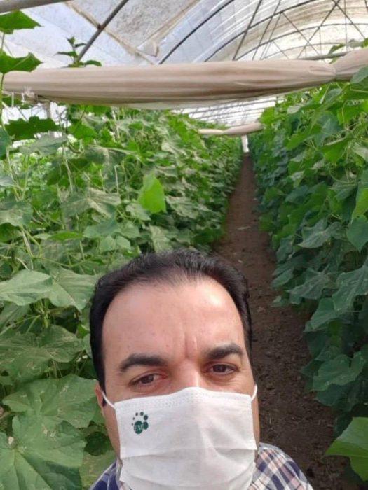 ای ام در کشت گلخانه