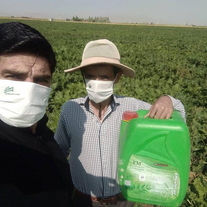 مصرف ای ام در مزارع